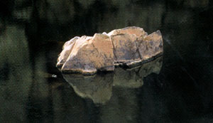 Rock and Water  Photograph